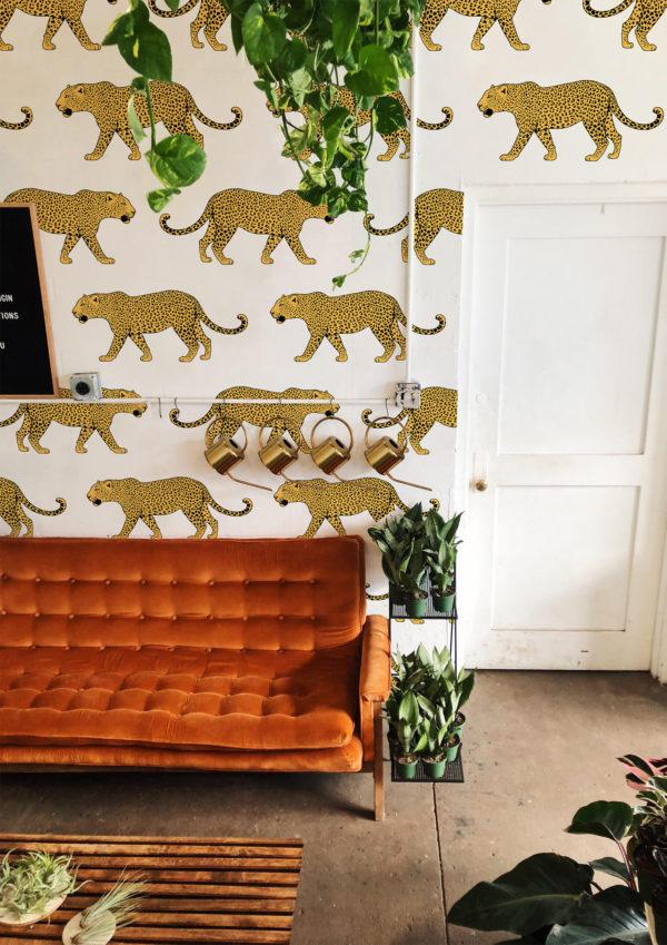 papier peint n°08 léopard sauvage