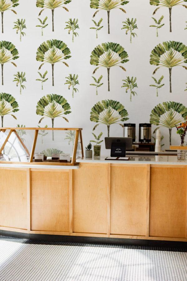 papier peint n°65 éventail bananier tropical